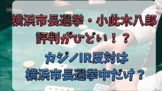 小此木八郎の評判がひどい?カジノIR反対は横浜市長選挙だけ?