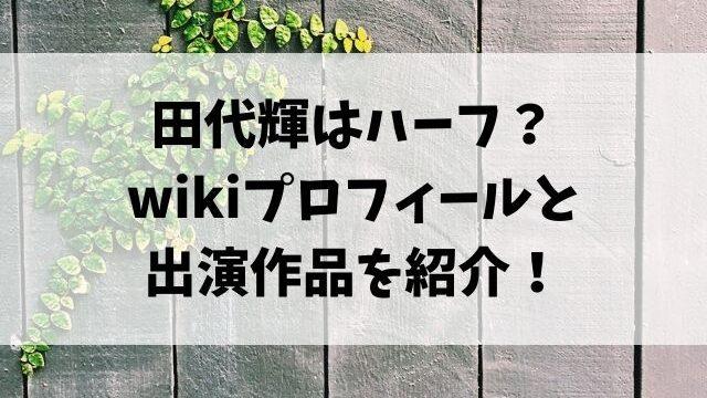田代輝はハーフ?wikiプロフィールと出演作品を紹介!